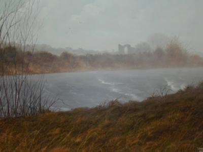 Boyne river Trim