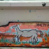 Horse Horizon