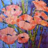 Salmon Poppies