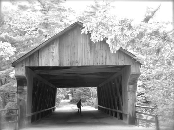 aristophanes, david lee black, coverred bridge, pilgrimage