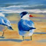 Royal Terns - oil - 12x24
