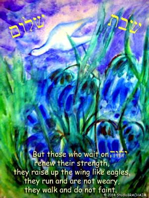Isa 40:31 Shabbat Shalom
