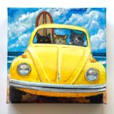 3 SURF CATS DRIVING ON THE BEACH