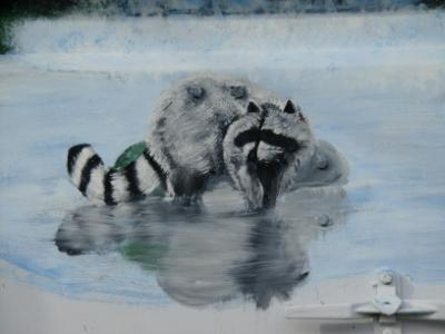 added racoon and reflection