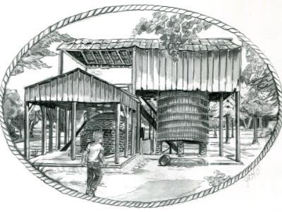 Florida Quest Illustration