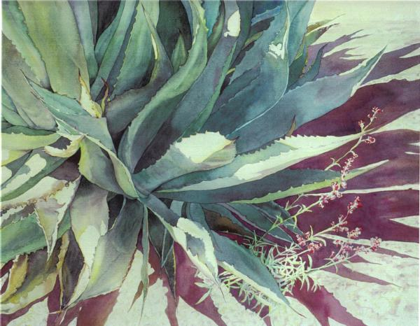 Pamela Shelksohn Watercolor Paintings and Portraits