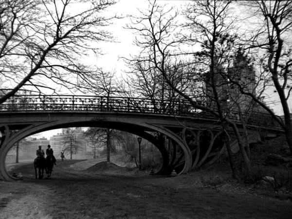 Bridle Path Central Park by Arthur Lavine