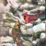 January Cardinal Pair in snowy Spruce Tree