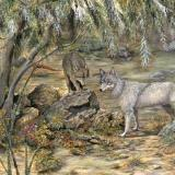 Springtime Promise: Mexican Wolves