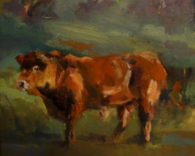 Sicilian bull